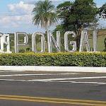 seguro de carro em Pongaí
