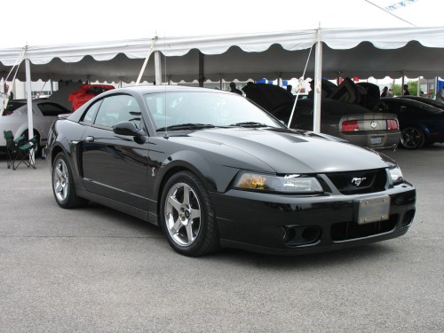 small resolution of 2003 ford mustang cobra the terminator
