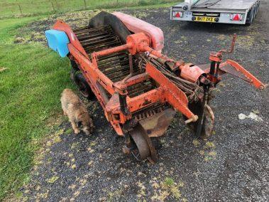 Ransomes / Johnson single row potato digger