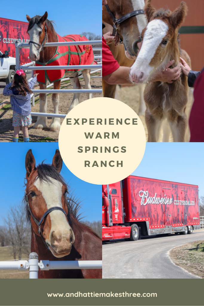 Experience Warm Springs Ranch
