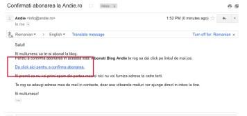 Verifica mailul, inclusiv casuta de spam. Vei gasi un mail cu un link pe care trebuie sa apesi pentru a confirma abonarea.