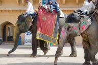 wpid408-Indien-091.jpg