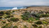 wpid605-Zypern-013.jpg
