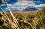 wpid1359-Neuseeland-026.jpg