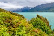 wpid1423-Neuseeland-058.jpg
