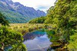 wpid1461-Neuseeland-077.jpg