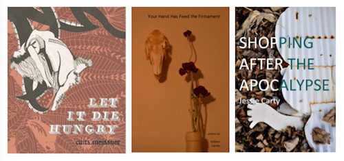 to poetry collections read in 2017