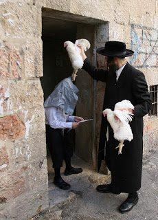 Il Kaparot e lo Yom Kippur: il voodoo e lo spergiuro del giudaismo