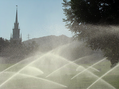 Pic of the Day: Holy water