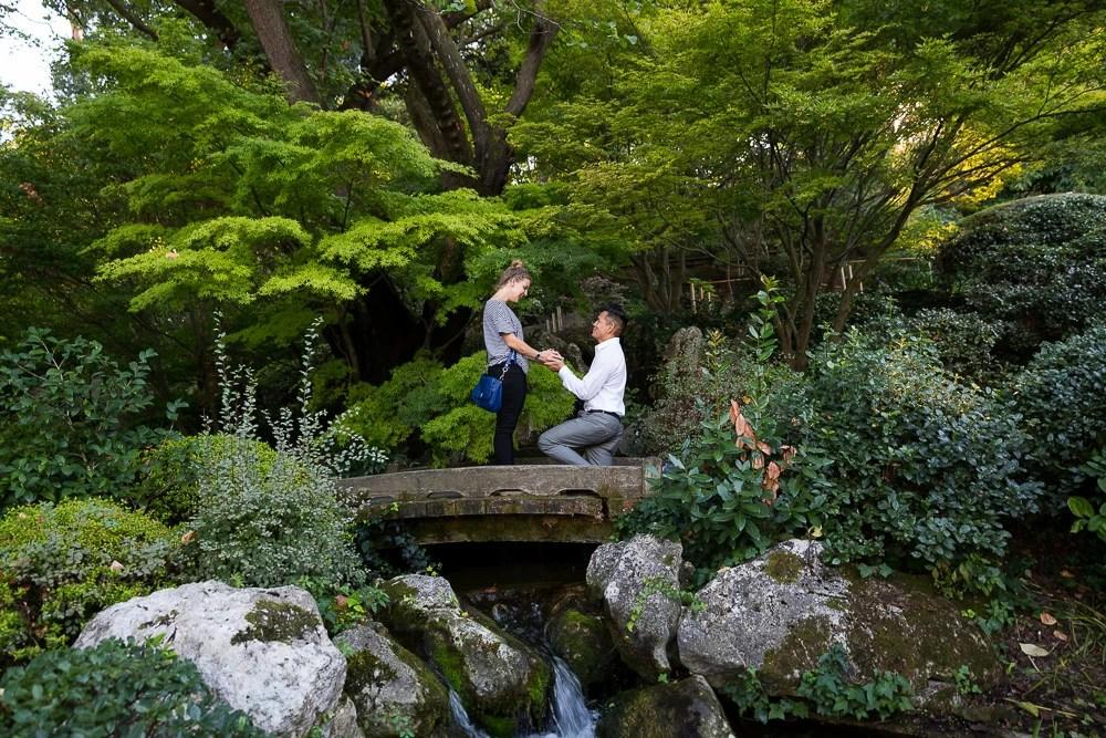 Rome Botanical Garden Wedding Proposal And Engagement