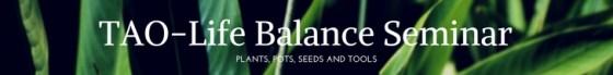 Tao-Life Balance Seminar Banner