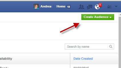 Create Facebook Audience