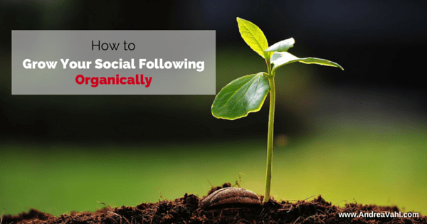 How to grow your social following