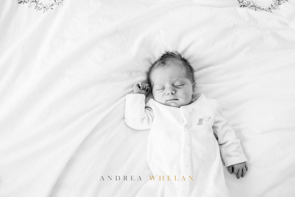 Andrea Whelan Photography -17