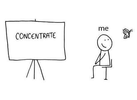 Facultatea de drept - concentrare