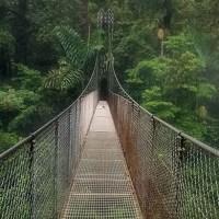 Зеленые холмы Коста-Рики. Фоторассказ. Часть 2