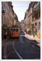 Маршрут 28 трамвая — достопримечательность города.