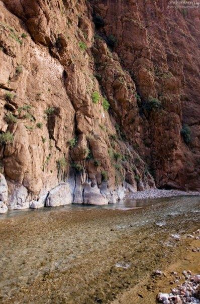 Прозрачная речка Todra в одноименном ущелье.