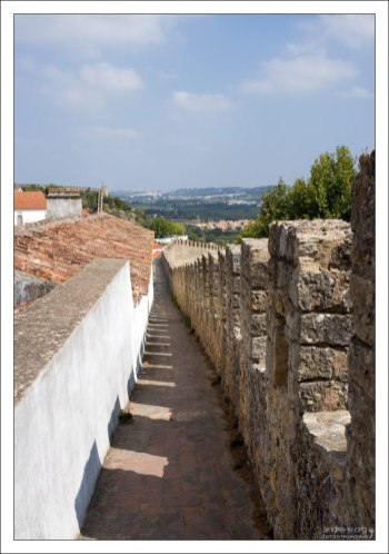 Периметр стен, защищающих город — 1565 метров.