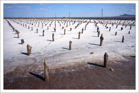 Точки кристаллизации соли в озере Баскунчак отмечены специальными пеньками.