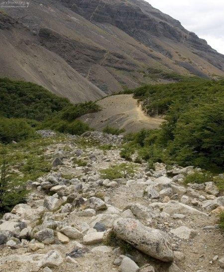 Отсюда до вершины ровно час ходьбы.
