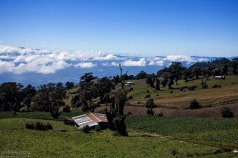 Поля сельскохозяйственных культур на склонах вулкана Иразу.