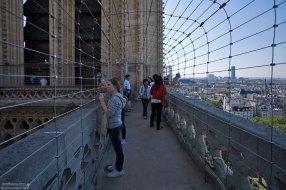 Переходы между башнями огорожены металлической сеткой, чтобы самоубийцы не прыгали. Нотр-Дам-де-Пари.