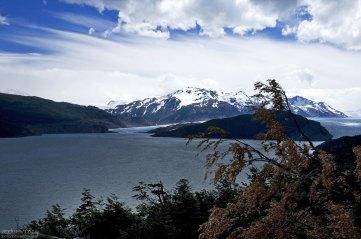 Островок La Isla, разделяющий ледник Grey на два языка.