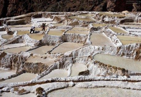 Работники кооператива выносят мешки соли на собственном горбу.