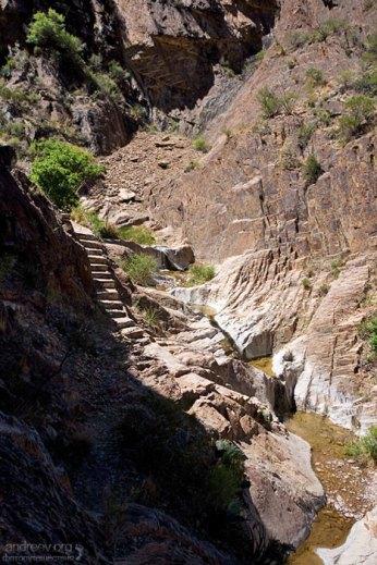 Лесенка, выбитая в камне, для облегчения спуска в каньон.