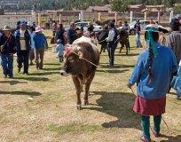 """Среди перуанцев на рынке чётко прослеживались две категории: деревенские и городские. Например, здесь справа женщина из """"деревенских"""", а группа покупателей слева - """"городские""""."""