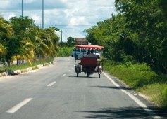 Велосипед-рикша - распространенное средство передвижения в Селестуне.