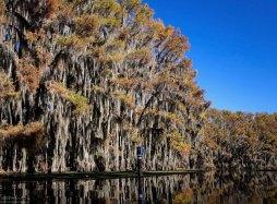 Поздней осенью и зимой поверхность озера напоминает зеркало.