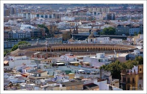 Арена для корриды Plaza de Toros de la Maestranza с высоты Севильского собора.