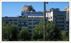 Китайцы заняты строительством жилья.