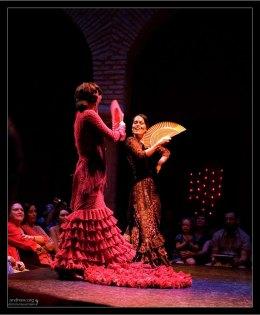 Начало представления в Музее фламенко.
