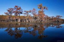 Свое название озеро получило в честь индейского племени Каддо, проживавшего в этой местности до 1835 года.