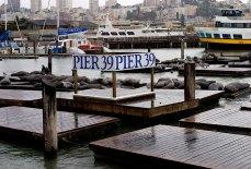 Пирс # 39 - одна из достопримечательностей Сан-Франциско.