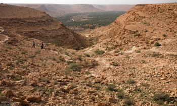 Каньон и оазис на горизонте в долине реки Зиз.