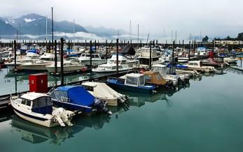 Тихая гавань Сьюарда.