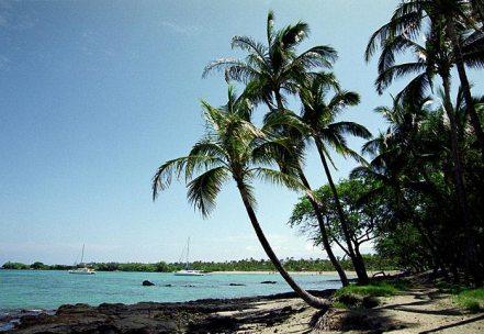 Пляж Waialea с великолепными подводными пейзажами.