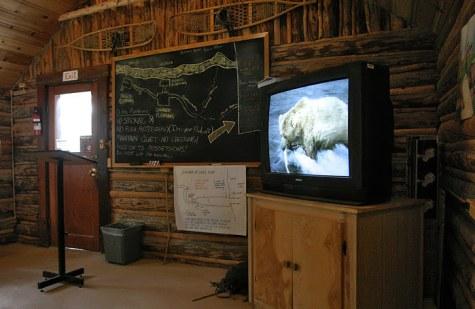 Схема водопада и кино по технике безопасного поведения среди диких медведей.
