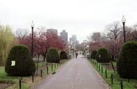 Городской парк Boston Common. Вид на Lagoon Bridge.
