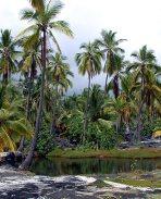В окрестностях деревни Pu'uhonua o Honaunau.