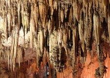 В гуще сталактитов. Carlsbad Caverns National Park.