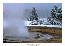 """""""Лесной фонтан"""" Twig Geyser в нижней гейзеровой долине. Первый октябрьский снег за ночь укутал весь парк «Йеллоустоун». К полудню от него не останется и следа, но ранним утром снег удивительным образом меняет все вокруг, и придает объем пейзажу. Только гейзеры ему не подвластны."""