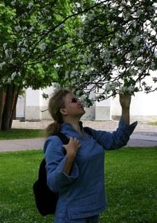 В яблоневом саду в Кремле. Великий Новгород.