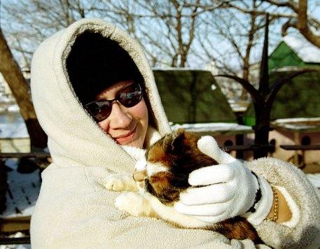 Приют для бездомных кошек около Парламента.