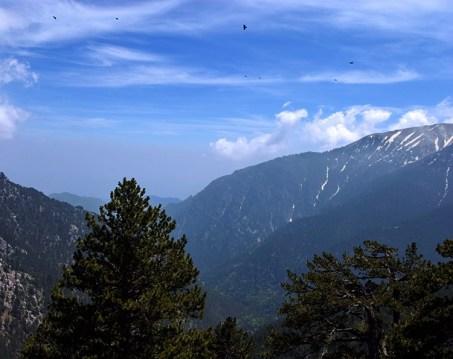 Стая хищных птиц, парящая над вершинами Олимпа.