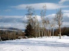 """Окрестности горнолыжного курорта """"Stowe""""."""